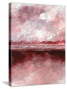 Pink Skies III by Stuart Roy