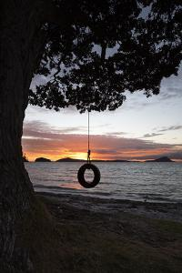 Tyre Swing at Long Bay by Stuart