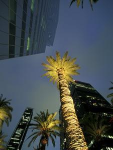 Downtown Los Angeles, Civic Center Area, California, USA by Stuart Westmoreland