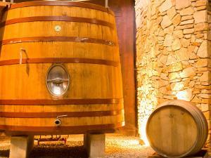 Oak Barrels, Juanico Winery, Uruguay by Stuart Westmoreland