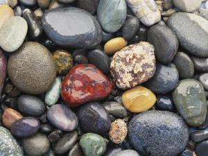 Wet Pebbles, Ruby Beach, Olympic National Park, Washington, Usa Coast by Stuart Westmoreland