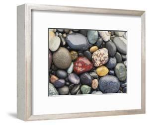 Wet Pebbles, Ruby Beach, Olympic National Park, Washington, Usa Coast by Stuart Westmoreland