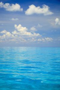 Close-up of blue tropical water, Bahamas. by Stuart Westmorland