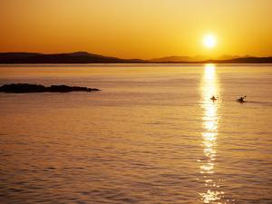 Kayakers at sunset, San Juan Island, WA. Haro Strait, Vancouver Island in the background by Stuart Westmorland