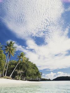 Palau, Honeymoon Island, Rock Islands, View of Beach with Palm Trees by Stuart Westmorland