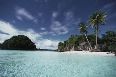 Palau, Honeymoon Island, Rock Islands by Stuart Westmorland