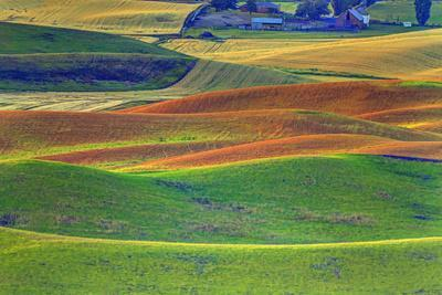 Palouse Area of Eastern Washington, USA