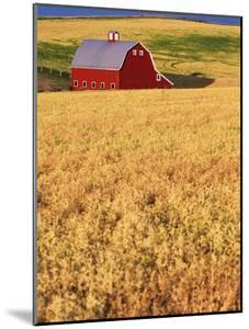 Red Barn on Rolling Hills by Stuart Westmorland
