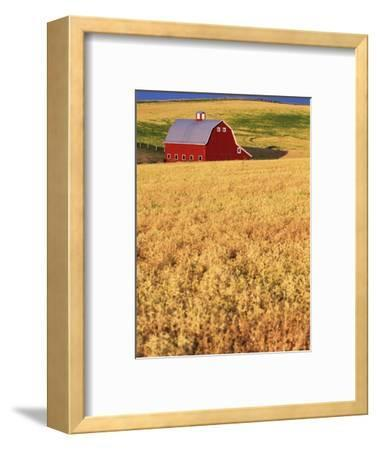 Red Barn on Rolling Hills