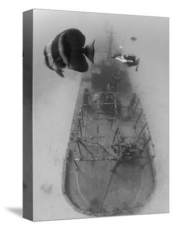 Scuba Diver Near Sunken Ship