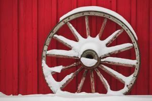 Snow-covered wagon wheels against red barn near town of Banff, Canadian Rockies, Alberta, Canada by Stuart Westmorland