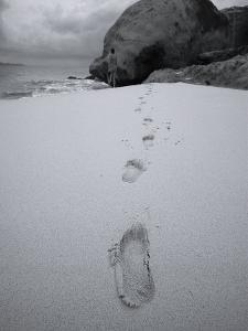 Spring Bay Beach, Virgin Gorda, Caribbean by Stuart Westmorland