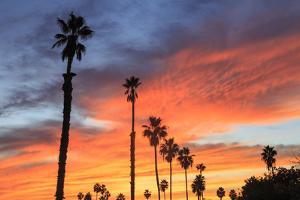 Vibrant sunset, Pacific Beach, San Diego, California, USA by Stuart Westmorland