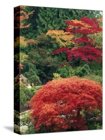View of Butchart Garden, Victoria, British Columbia, Canada