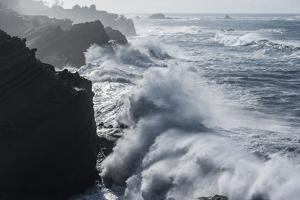 Winter storm watching, Shore Acres State Park, Southern Oregon Coast, USA by Stuart Westmorland