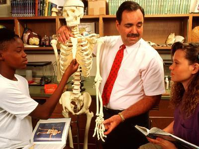 Students with Teacher Examining Skeleton in 7th Grade Science Class-Bill Bachmann-Photographic Print