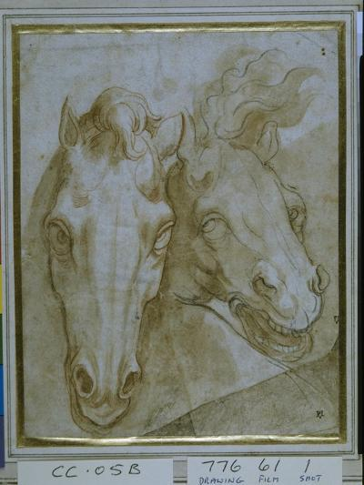 Studies for the Heads of Two Horses--Giclee Print