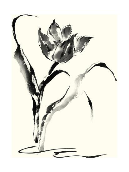 Studies in Ink - Tulip-Nan Rae-Art Print