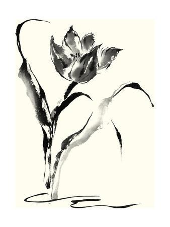https://imgc.artprintimages.com/img/print/studies-in-ink-tulip_u-l-pnalki0.jpg?p=0