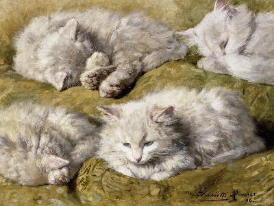 Studies of a Long-haired White Cat-Henriette Ronner-Knip-Giclee Print