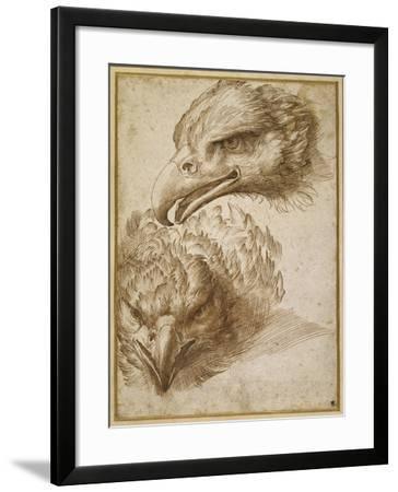 Studies of an Eagle's Head-Perino Del Vaga-Framed Giclee Print