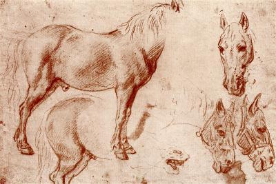 Studies of Horses, 1913-Peter Paul Rubens-Giclee Print