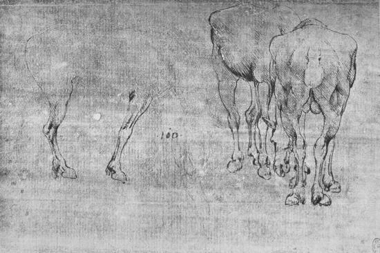 'Studies of Horses Grazing', c1480 (1945)-Leonardo da Vinci-Giclee Print