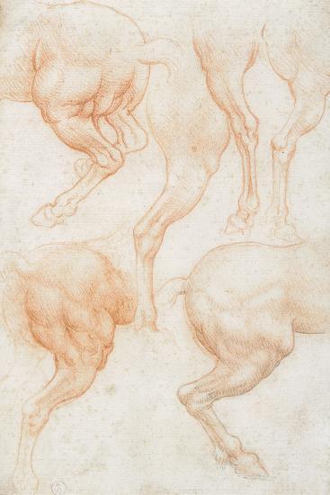 Studies of the Horse Rear Legs-Leonardo da Vinci-Giclee Print