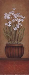 Paperwhites I by Studio 3 bamboo
