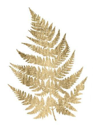Graphic Gold Fern IV