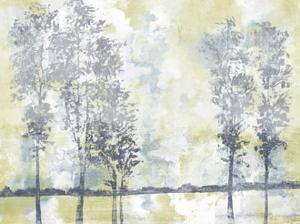 Watercolor Mist II by Studio W