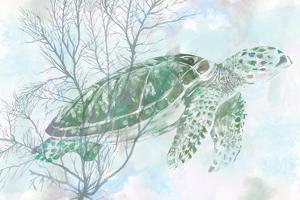 Watercolor Sea Turtle I by Studio W