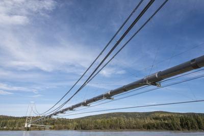 Trans-Alaska Pipeline by studiodr