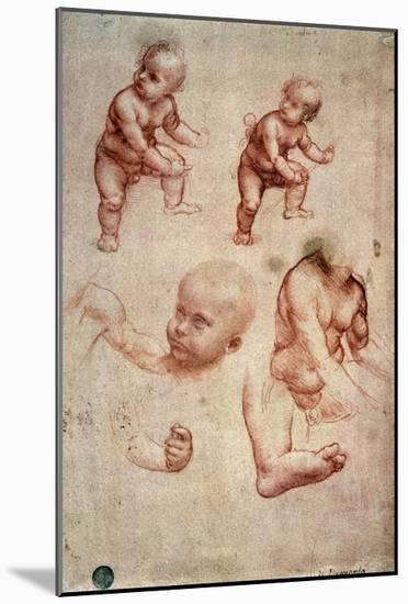Study for a Portrait of a Child-Leonardo da Vinci-Mounted Premium Giclee Print