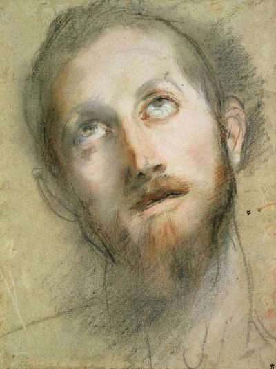 Study for the Head of Christ-Federico Fiori Barocci-Giclee Print