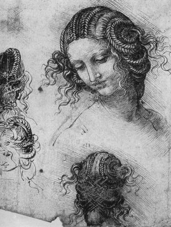 https://imgc.artprintimages.com/img/print/study-for-the-head-of-leda-1503-1507_u-l-pthsj90.jpg?p=0