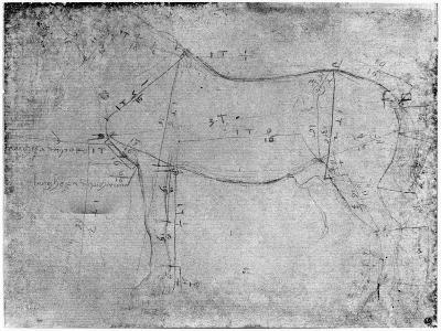 Study of a Horse-Leonardo da Vinci-Giclee Print
