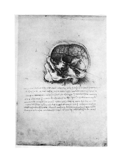 Study of a Human Skull, Late 15th or Early 16th Century-Leonardo da Vinci-Giclee Print