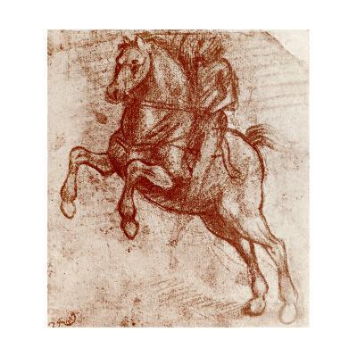 Study of a Knight, 1913-Leonardo da Vinci-Giclee Print