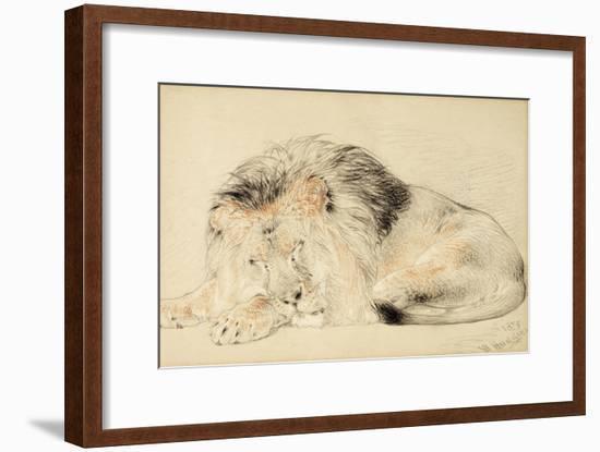 Study of a Lion, 1879-William Huggins-Framed Giclee Print