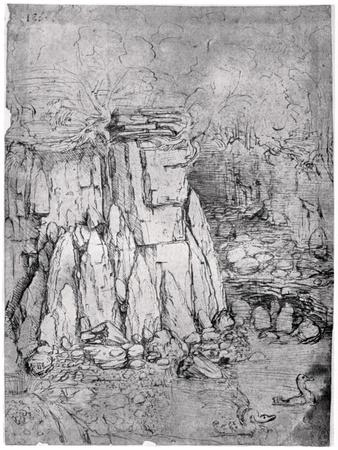 https://imgc.artprintimages.com/img/print/study-of-a-rocky-cavern-with-ducks-1482-1485_u-l-pthrem0.jpg?p=0