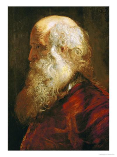 Study of an Old Man, circa 1610-Peter Paul Rubens-Giclee Print