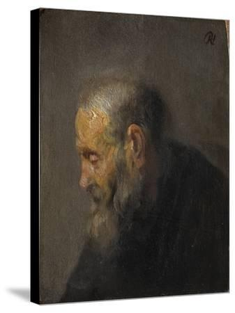 Study of an Old Man in Profile, c. 1630-Rembrandt van Rijn-Stretched Canvas Print