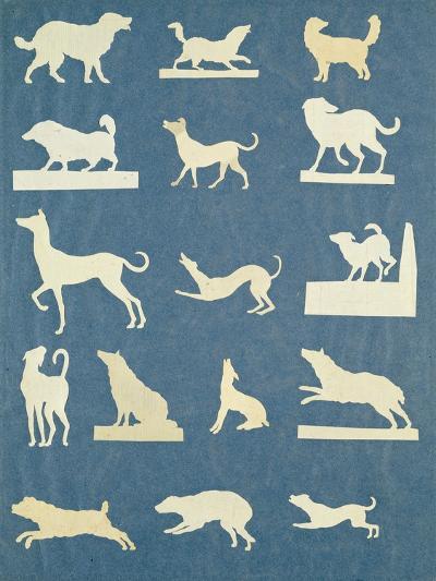 Study of Dogs-Philipp Otto Runge-Giclee Print