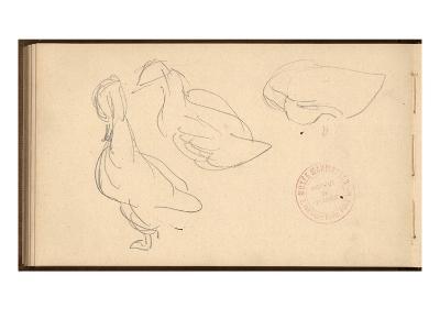 Study of Ducks (Pencil on Paper)-Claude Monet-Giclee Print