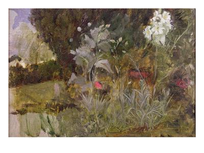 Study of Flowers and Foliage, for 'The Enchanted Garden'-John William Waterhouse-Giclee Print