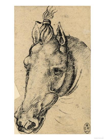 Study of the Head of a Horse, Pen Drawing on Paper Turned Yellow, Royal Library, Windsor-Leonardo da Vinci-Premium Giclee Print