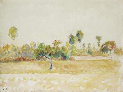Study of the Orchard at Eragny-Sur-Epte, Seen from the Artist's House, C. 1886 - 1890-Camille Pissarro-Giclee Print