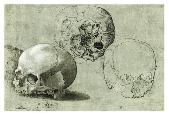 Study of Three Skulls--Art Print