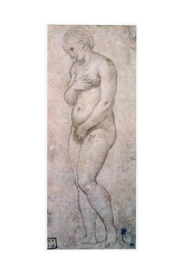 Study of Venus, C1500-1520-Raphael-Giclee Print